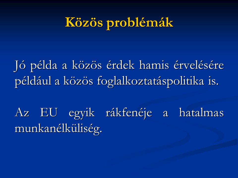 Közös problémák Jó példa a közös érdek hamis érvelésére például a közös foglalkoztatáspolitika is.