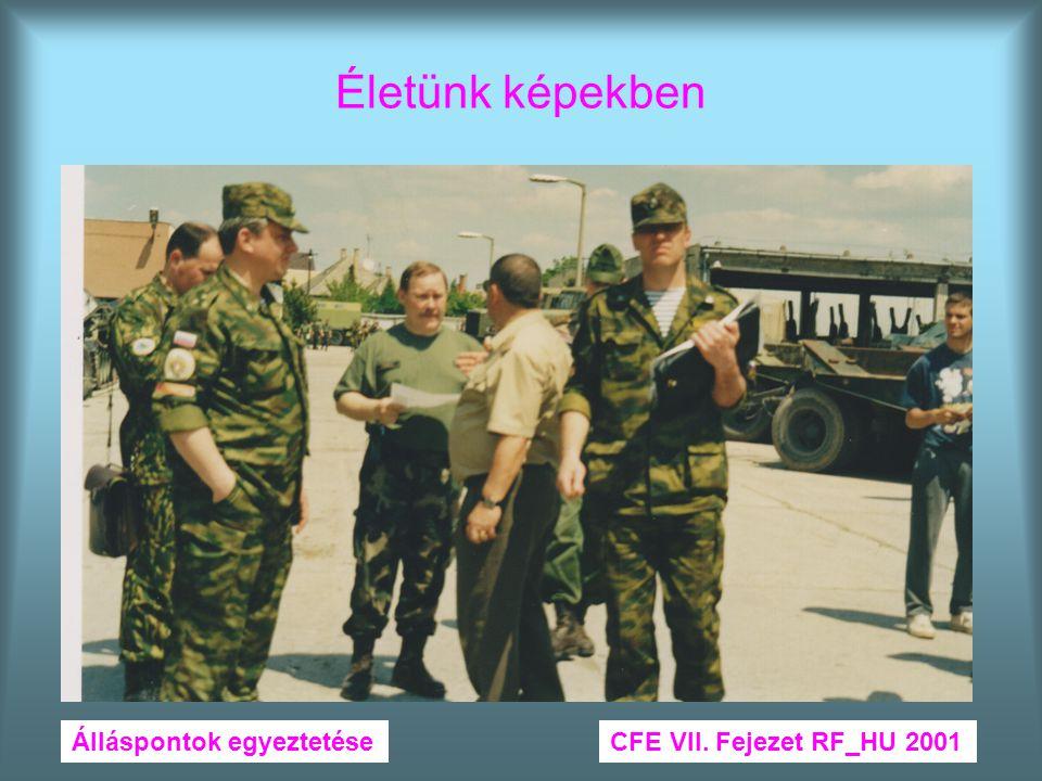 Életünk képekben Álláspontok egyeztetéseCFE VII. Fejezet RF_HU 2001