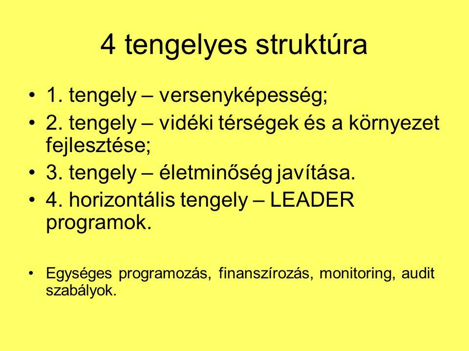 4 tengelyes struktúra •1.tengely – versenyképesség; •2.
