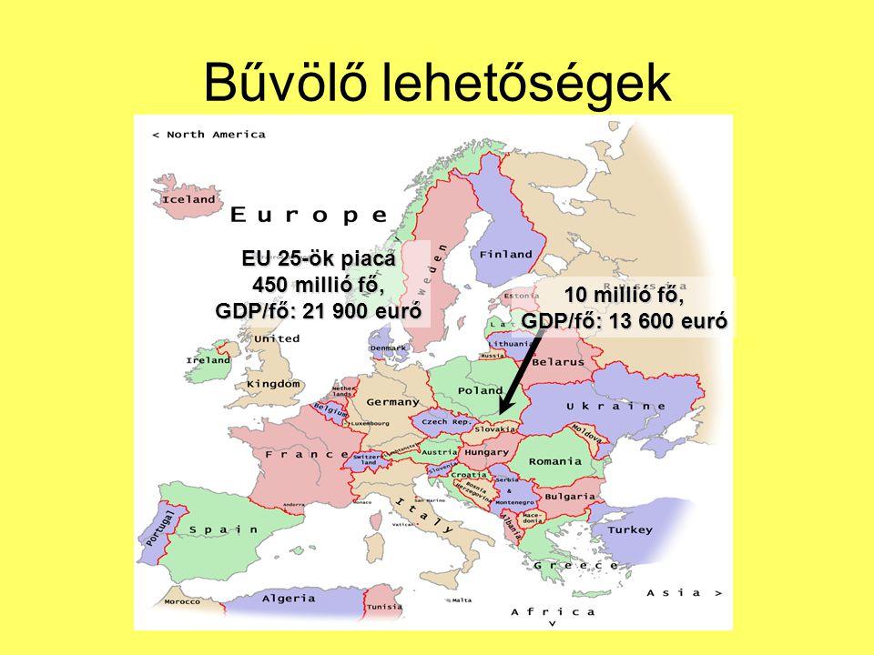 Bűvölő lehetőségek 10 millió fő, GDP/fő: 13 600 euró EU 25-ök piaca 450 millió fő, GDP/fő: 21 900 euró