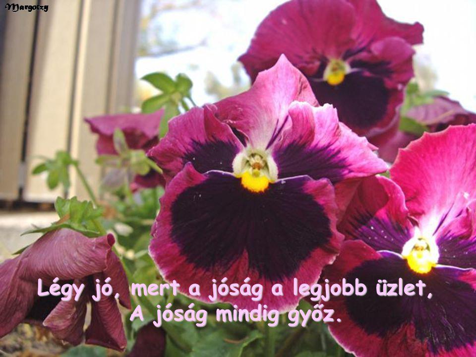 Margotzy Légy jó, mert a jóság a legjobb üzlet, A jóság mindig győz.