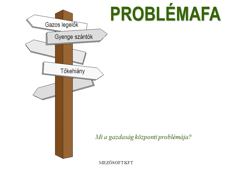 MEZŐSOFT KFT Probléma fa célfa, logikai keretmátrix •Egy gazdaság főbb mutatói alapján bemutatva (írásos anyag mellékelve)