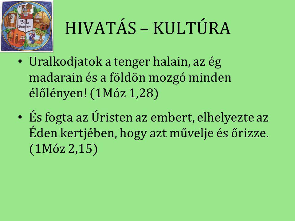 HIVATÁS – KULTÚRA • Uralkodjatok a tenger halain, az ég madarain és a földön mozgó minden élőlényen! (1Móz 1,28) • És fogta az Úristen az embert, elhe