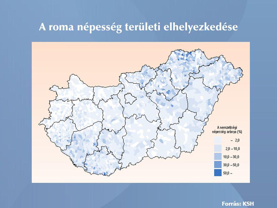 83 CKÖ 68 megállapodás 135 CKÖ 56 megállapodás 57 CKÖ 53 megállapodás A Cigány Kisebbségi Önkormányzatok valamint a Munkaügyi Központ kirendeltségeivel kötött megállapodások száma a Dél-Dunántúlon: