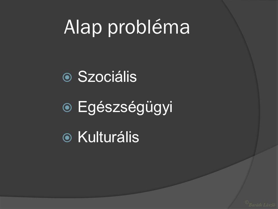 Alap probléma  Szociális  Egészségügyi  Kulturális © Baráth László