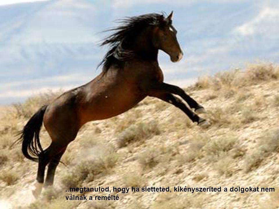 .megtanulod, hogy ha megalázol és lenézel egy teremtményt elöbb- utóbb visszakapod sokszorosan