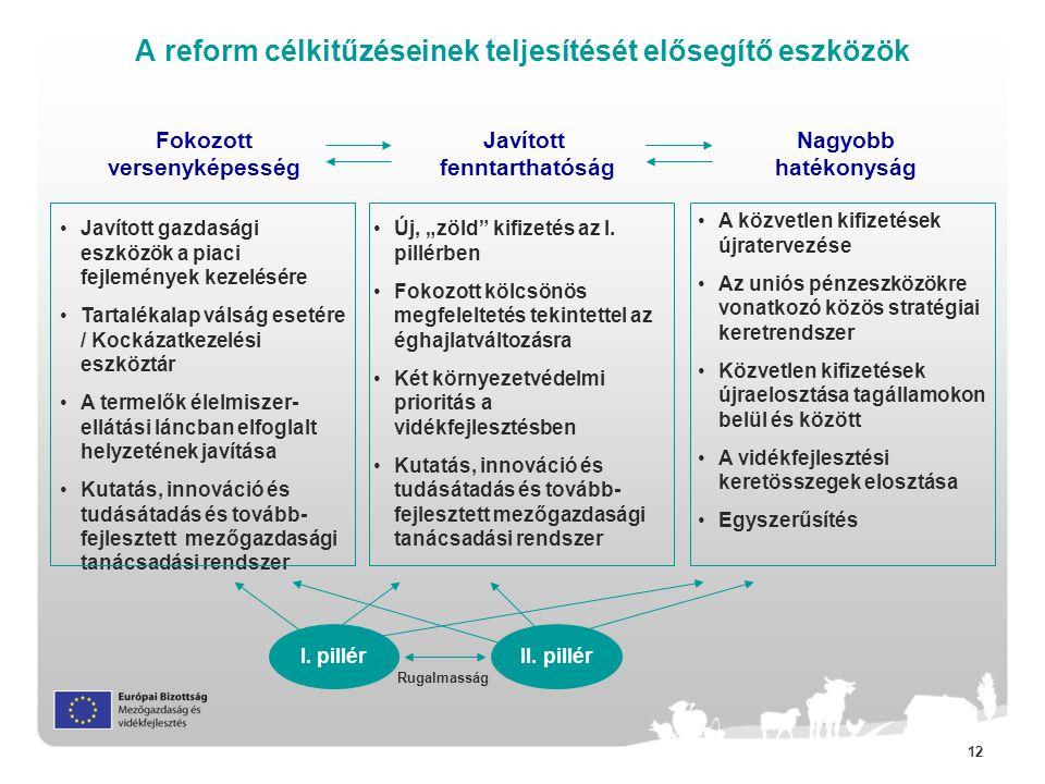 """12 A reform célkitűzéseinek teljesítését elősegítő eszközök Javított fenntarthatóság Fokozott versenyképesség Nagyobb hatékonyság •Új, """"zöld kifizetés az I."""