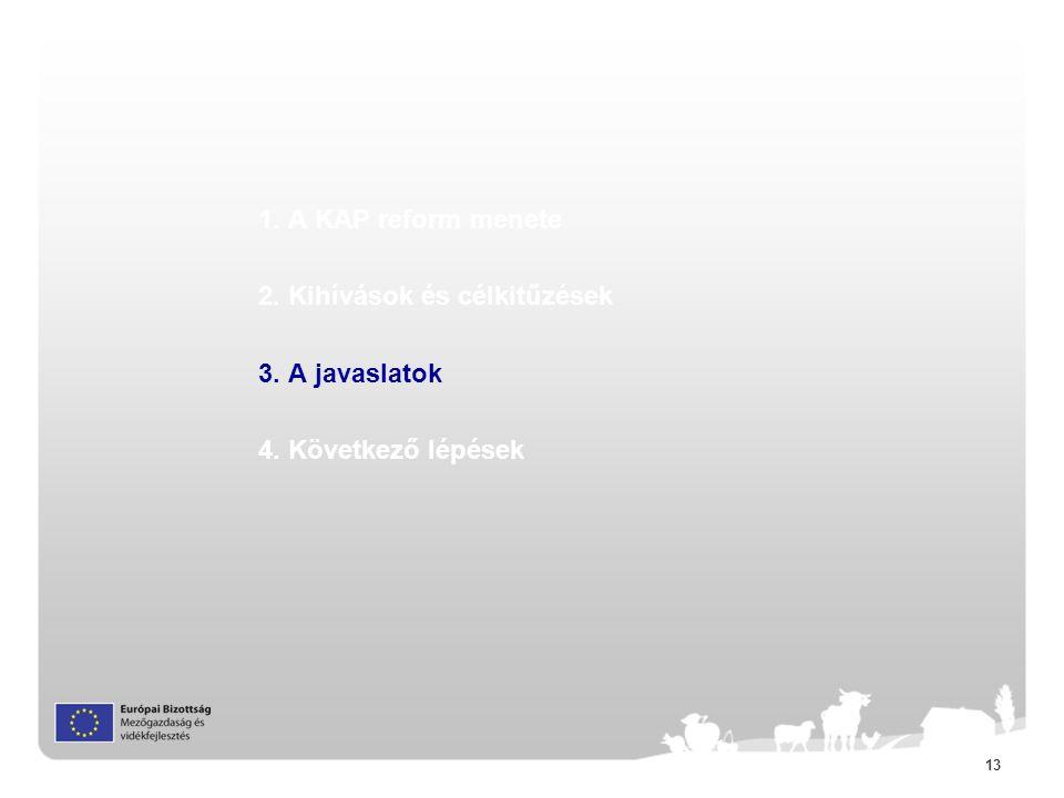 13 1. A KAP reform menete 2. Kihívások és célkitűzések 3. A javaslatok 4. Következő lépések