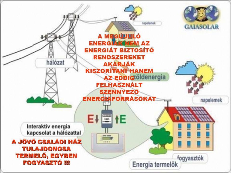 A MEGÚJULÓ ENERGIÁK NEM AZ ENERGIÁT BIZTOSÍTÓ RENDSZEREKET AKARJÁK KISZORÍTANI HANEM AZ EDDIG FELHASZNÁLT SZENNYEZŐ ENERGIAFORRÁSOKAT A JÖVŐ CSALÁDI H
