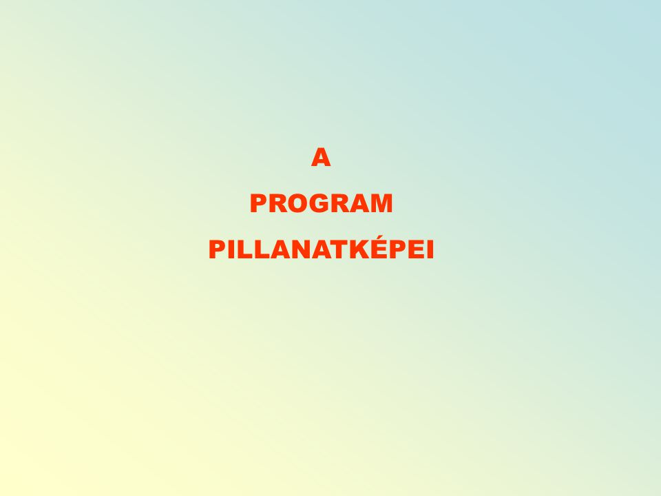 A PROGRAM PILLANATKÉPEI