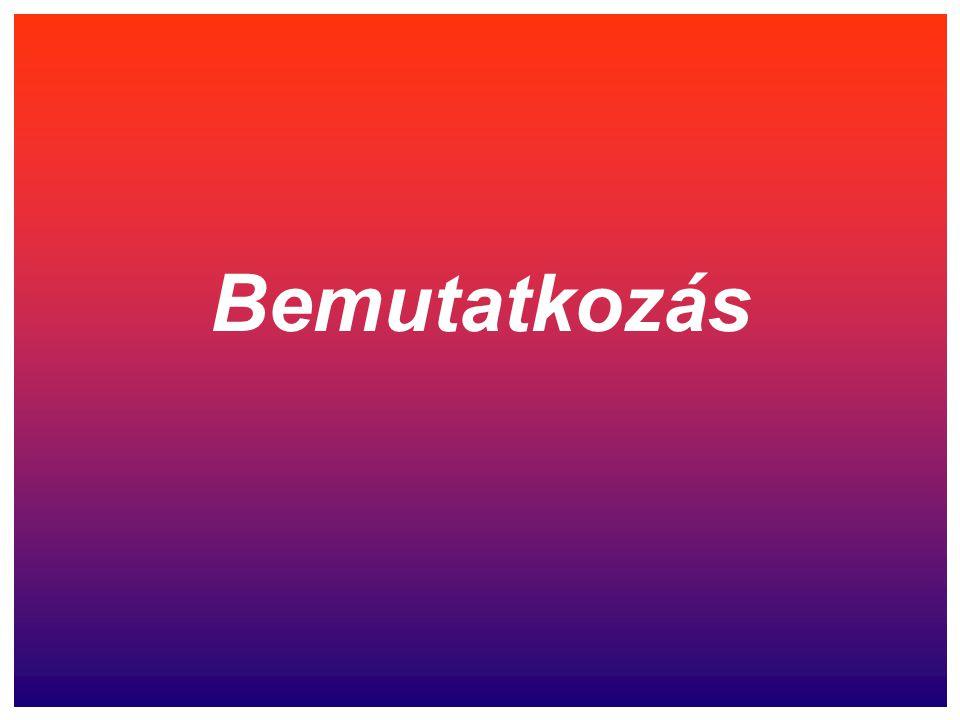 VST-SYSTEM KFT 2476. Pázmánd, Kossuth u. 48. Tel.-Fax: 06-22-463-734 GSM: 20-565-8340
