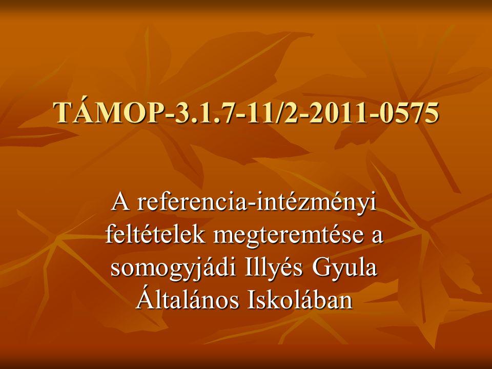 TÁMOP-3.1.7-11/2-2011-0575 A referencia-intézményi feltételek megteremtése a somogyjádi Illyés Gyula Általános Iskolában