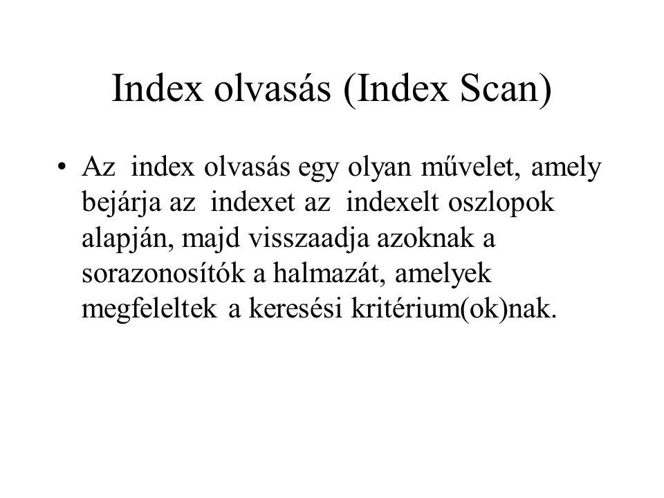 Index olvasás (Index Scan) •Az index olvasás egy olyan művelet, amely bejárja az indexet az indexelt oszlopok alapján, majd visszaadja azoknak a sorazonosítók a halmazát, amelyek megfeleltek a keresési kritérium(ok)nak.
