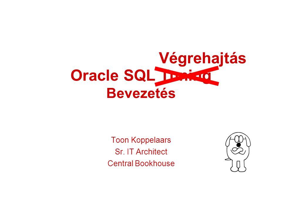 Oracle SQL Tuning Bevezetés Toon Koppelaars Sr. IT Architect Central Bookhouse Végrehajtás