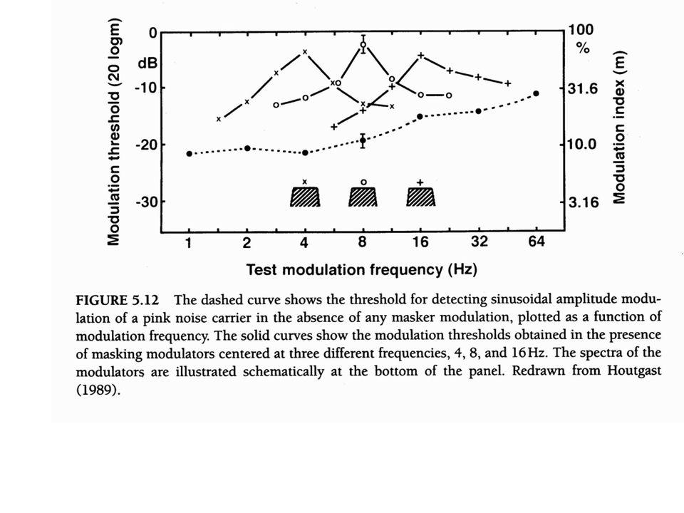 Temporal Modulation Transfer Function (TMTF)