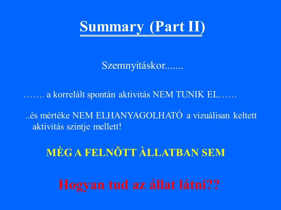 Summary (Part II) Hogyan tud az állat látni ..és mértéke NEM ELHANYAGOLHATÓ a vizuálisan keltett aktivitás szintje mellett.