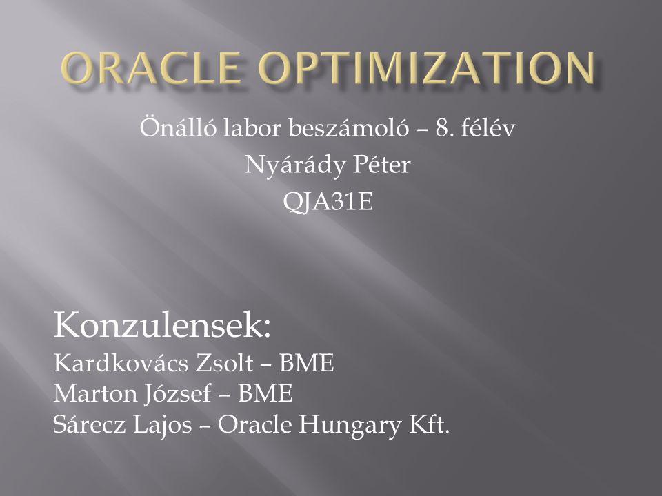 Önálló labor beszámoló – 8. félév Nyárády Péter QJA31E Konzulensek: Kardkovács Zsolt – BME Marton József – BME Sárecz Lajos – Oracle Hungary Kft.