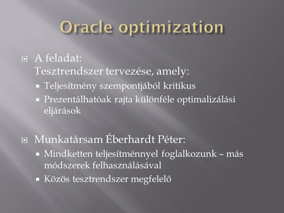  A feladat: Tesztrendszer tervezése, amely:  Teljesítmény szempontjából kritikus  Prezentálhatóak rajta különféle optimalizálási eljárások  Munkat
