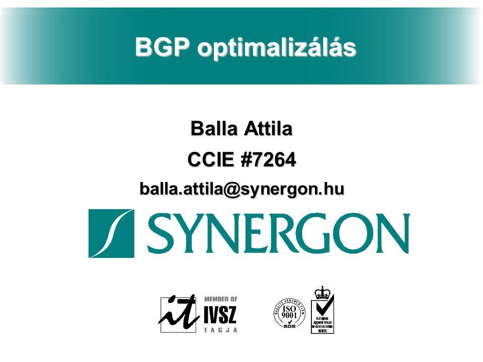 Tartalom n Bevezető n BGP Konvergencia n További lehetőségek
