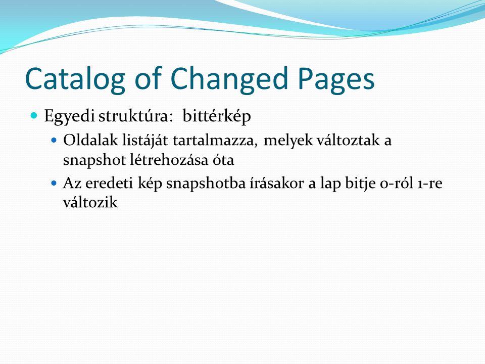 Catalog of Changed Pages  Egyedi struktúra: bittérkép  Oldalak listáját tartalmazza, melyek változtak a snapshot létrehozása óta  Az eredeti kép sn