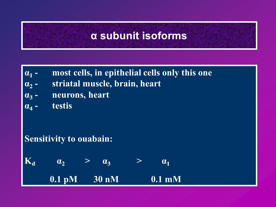 α subunit isoforms α 1 -most cells, in epithelial cells only this one α 2 -striatal muscle, brain, heart α 3 -neurons, heart α 4 - testis Sensitivity to ouabain: K d α 2 > α 3 > α 1 0.1 pM 30 nM 0.1 mM
