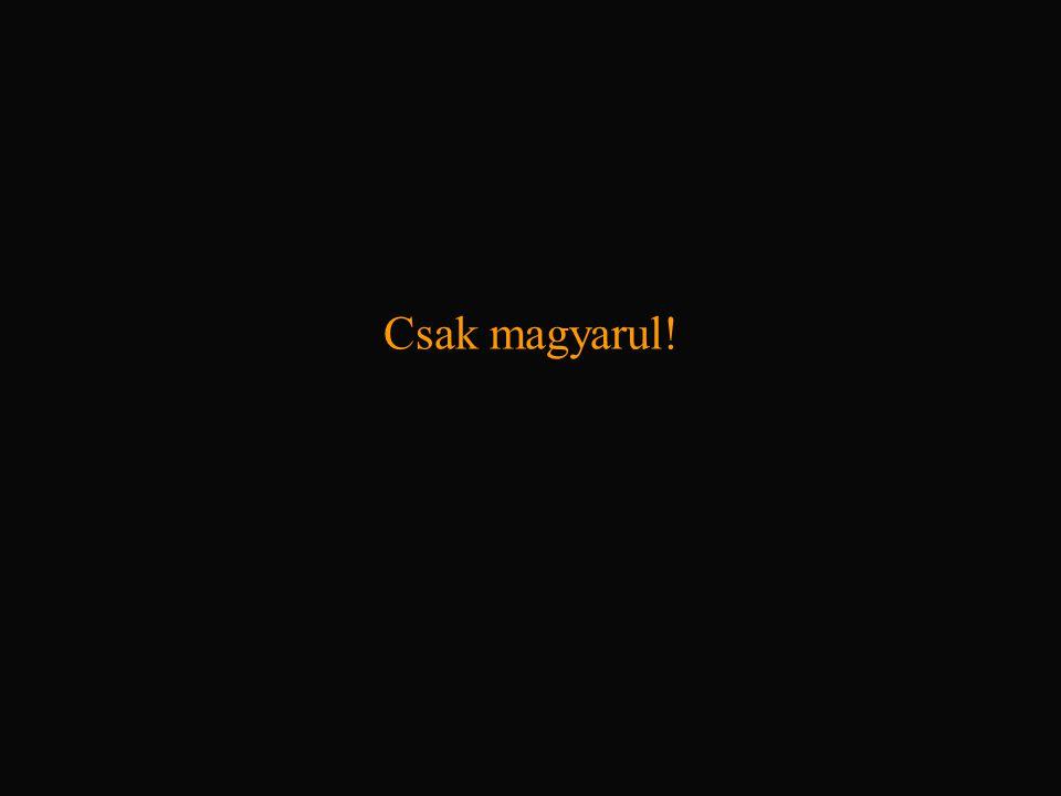 Csak magyarul!