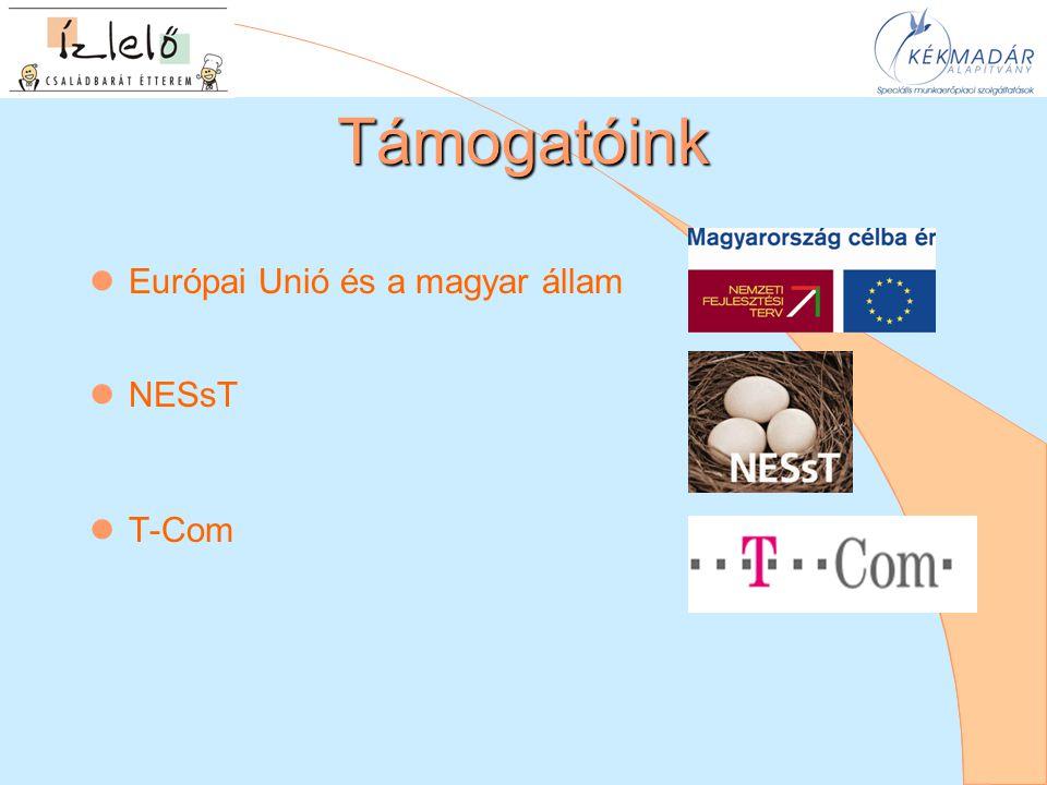Támogatóink  Európai Unió és a magyar állam  NESsT  T-Com