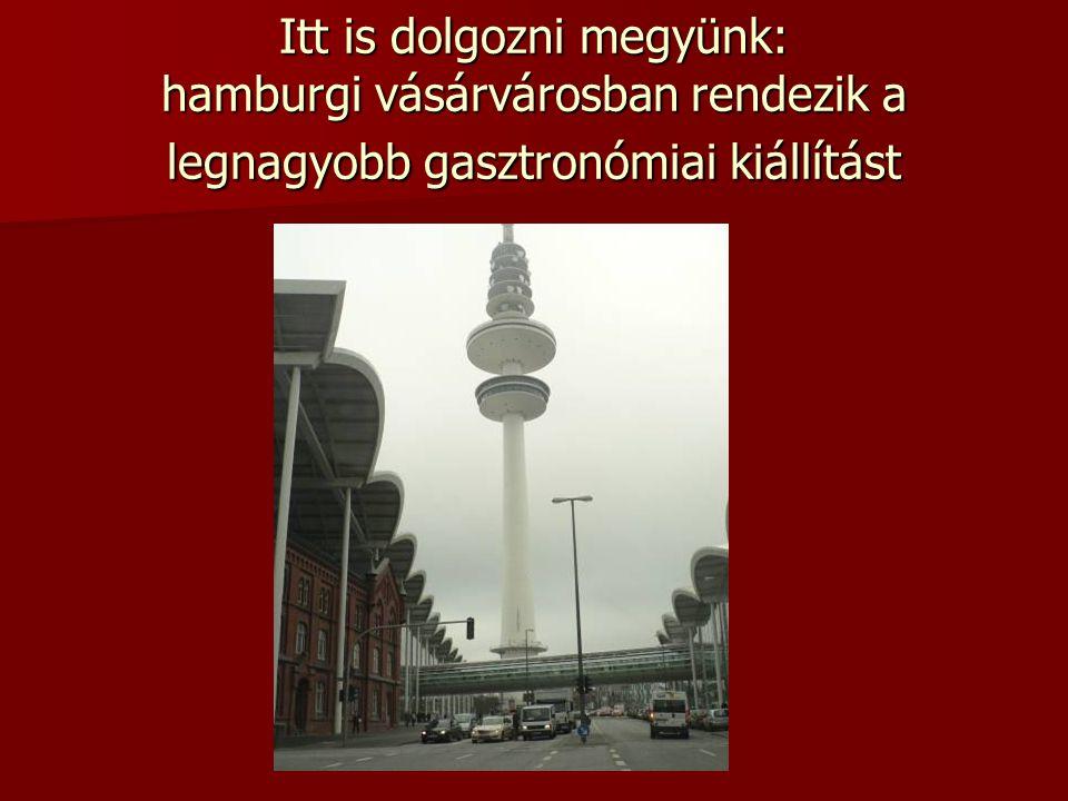 Itt is dolgozni megyünk: hamburgi vásárvárosban rendezik a legnagyobb gasztronómiai kiállítást