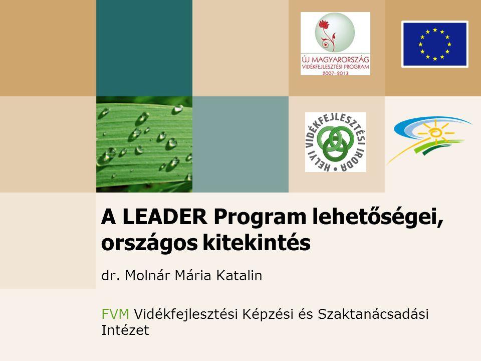 A LEADER Program lehetőségei, országos kitekintés dr. Molnár Mária Katalin FVM Vidékfejlesztési Képzési és Szaktanácsadási Intézet