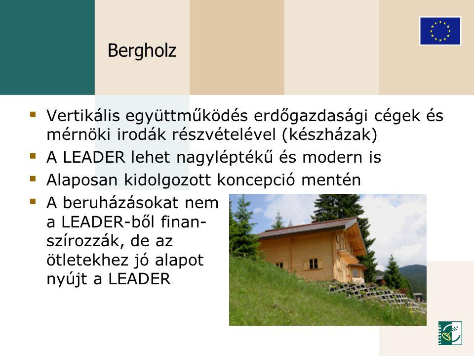 Bergholz  Vertikális együttműködés erdőgazdasági cégek és mérnöki irodák részvételével (készházak)  A LEADER lehet nagyléptékű és modern is  Alapos