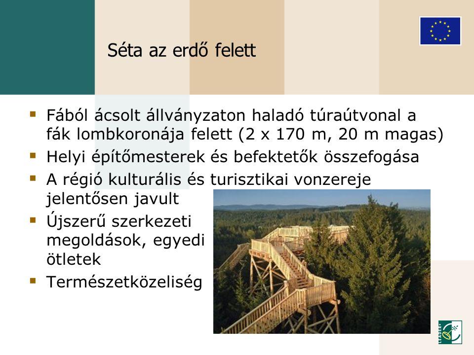 Séta az erdő felett  Fából ácsolt állványzaton haladó túraútvonal a fák lombkoronája felett (2 x 170 m, 20 m magas)  Helyi építőmesterek és befektet