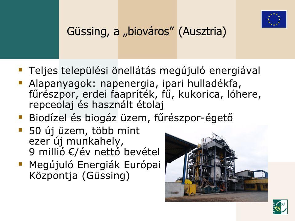 """Güssing, a """"biováros"""" (Ausztria)  Teljes települési önellátás megújuló energiával  Alapanyagok: napenergia, ipari hulladékfa, fűrészpor, erdei faapr"""
