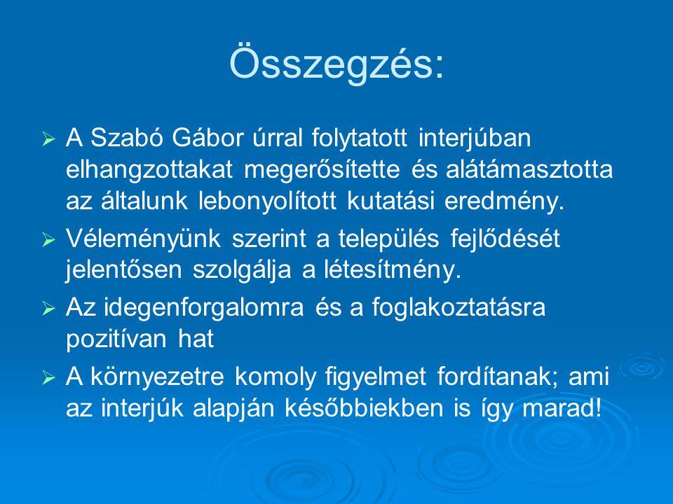 Összegzés:   A Szabó Gábor úrral folytatott interjúban elhangzottakat megerősítette és alátámasztotta az általunk lebonyolított kutatási eredmény. 