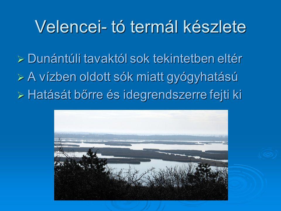 Velencei- tó termál készlete  Dunántúli tavaktól sok tekintetben eltér  A vízben oldott sók miatt gyógyhatású  Hatását bőrre és idegrendszerre fejt