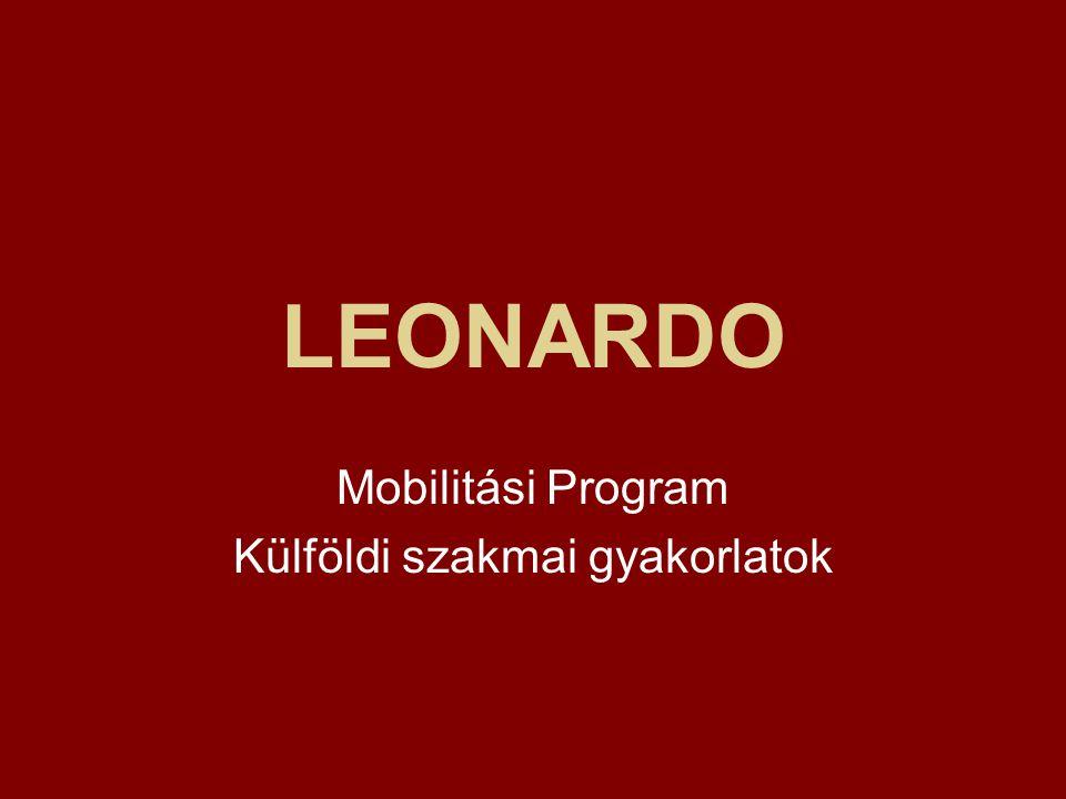 LEONARDO Mobilitási Program Külföldi szakmai gyakorlatok