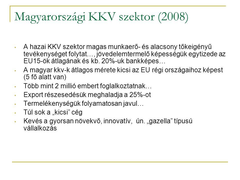 Magyarországi KKV szektor (2008) • A hazai KKV szektor magas munkaerő- és alacsony tőkeigényű tevékenységet folytat…, jövedelemtermelő képességük egyt