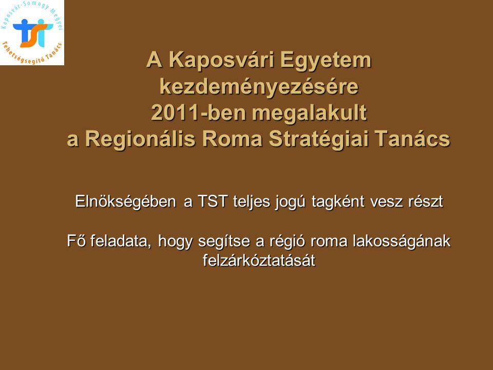 A Kaposvári Egyetem kezdeményezésére 2011-ben megalakult a Regionális Roma Stratégiai Tanács Elnökségében a TST teljes jogú tagként vesz részt Fő fela