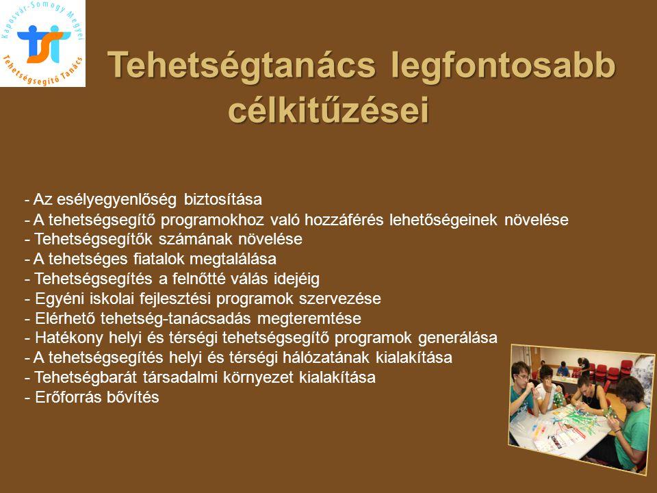 """Talentum program előkészítése   A Kollégium meghatározó feladata, mely a Tehetség Híd programot követő jelentős pályázati lehetőség   Kaposvár-Somogy Megyei TST kapott felkérést a konstruktív nyilvánosság, tehetség-társadalom munkacsoport feladatainak szakmai előkészítése témakörben   Elkészítettük a """"A Tanácsok alapfunkcióinak hatékonyabb megvalósítása, tevékenységük beillesztése a tehetségsegítés közvetlen és közvetett szervezeti és szakmai rendszerébe c."""
