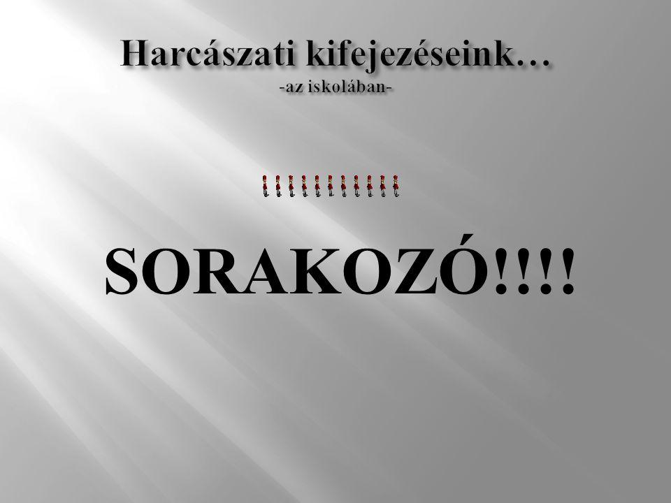 SORAKOZÓ!!!!