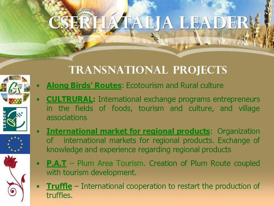 TRANSNATIONAL PROJECTS •Along Birds' Routes: Ecotourism and Rural culture •CULTRURAL: International exchange programs entrepreneurs in the fields of f