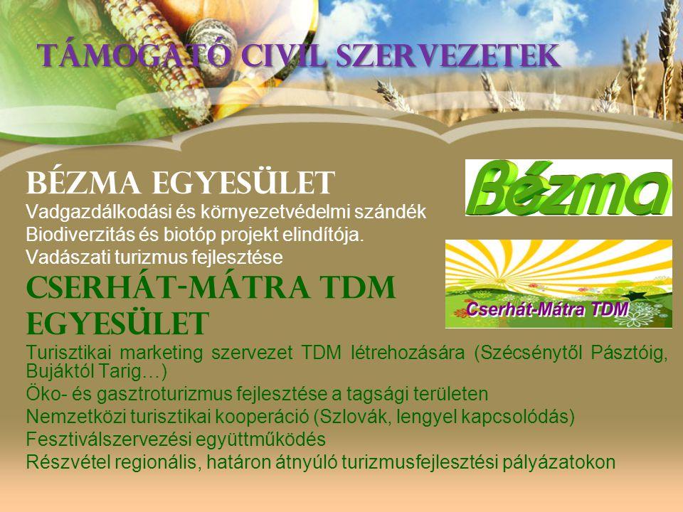 Cserhátalja LEADER Background •Predecessor in LEADER+: 2005-2006 South-Cserhat, 15 villages, 14,500 •Current LEADER: 2007-2010:Cserhatalja 25 villages and 1 Town, 34,500 inhabitants •Successor (2012.05.01): Cserhatalja Rural Development Association •Paszto microregion: 1 LAG - Nograd county: 3 LAGs (plus one…) North Hungary region: 19 LAGs •Hungary: Overall 96 LAGs in Hungary •Europe: 2200>> 2400 LAGs