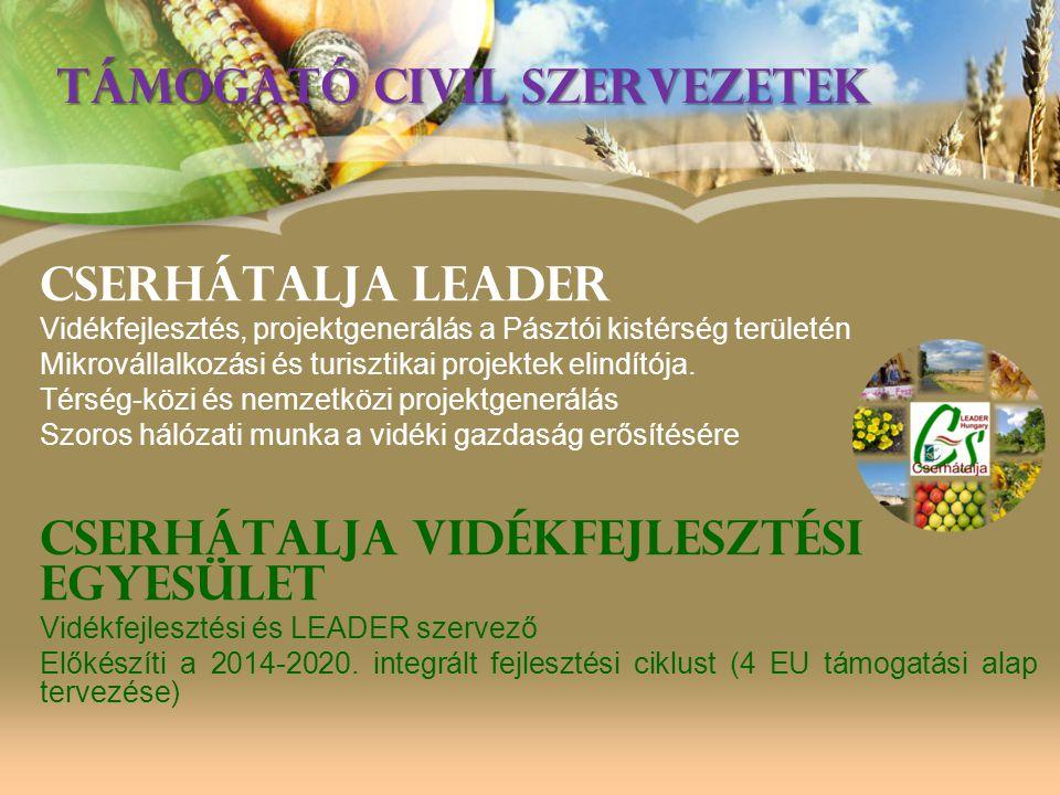 TÁMOGATÓ CIVIL SZERVEZETEK Cserhátalja leader Vidékfejlesztés, projektgenerálás a Pásztói kistérség területén Mikrovállalkozási és turisztikai projekt