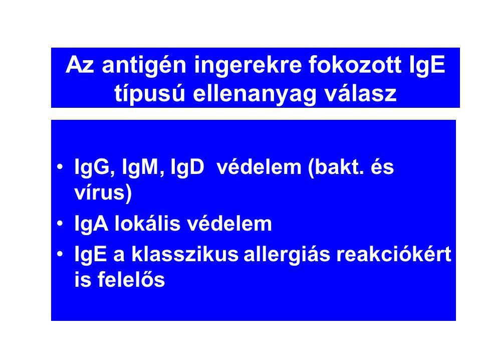 Az antigén ingerekre fokozott IgE típusú ellenanyag válasz •IgG, IgM, IgD védelem (bakt. és vírus) •IgA lokális védelem •IgE a klasszikus allergiás re