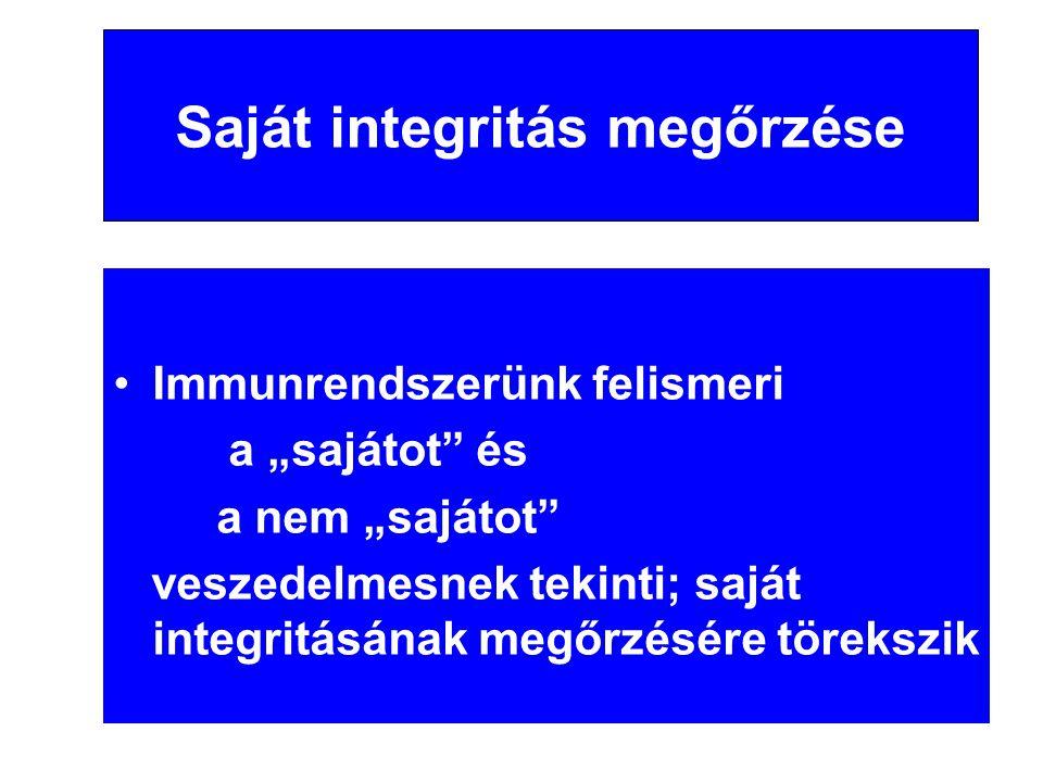 """Saját integritás megőrzése •Immunrendszerünk felismeri a """"sajátot"""" és a nem """"sajátot"""" veszedelmesnek tekinti; saját integritásának megőrzésére töreksz"""