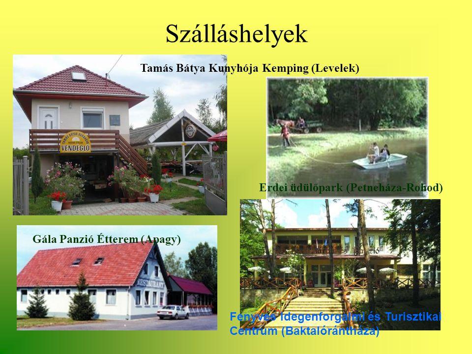 Szálláshelyek Tamás Bátya Kunyhója Kemping (Levelek) Erdei üdülőpark (Petneháza-Rohod) Gála Panzió Étterem (Apagy) Fenyves Idegenforgalmi és Turisztik