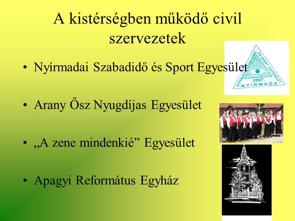 """A kistérségben működő civil szervezetek •Nyírmadai Szabadidő és Sport Egyesület •Arany Ősz Nyugdíjas Egyesület •""""A zene mindenkié"""" Egyesület •Apagyi R"""