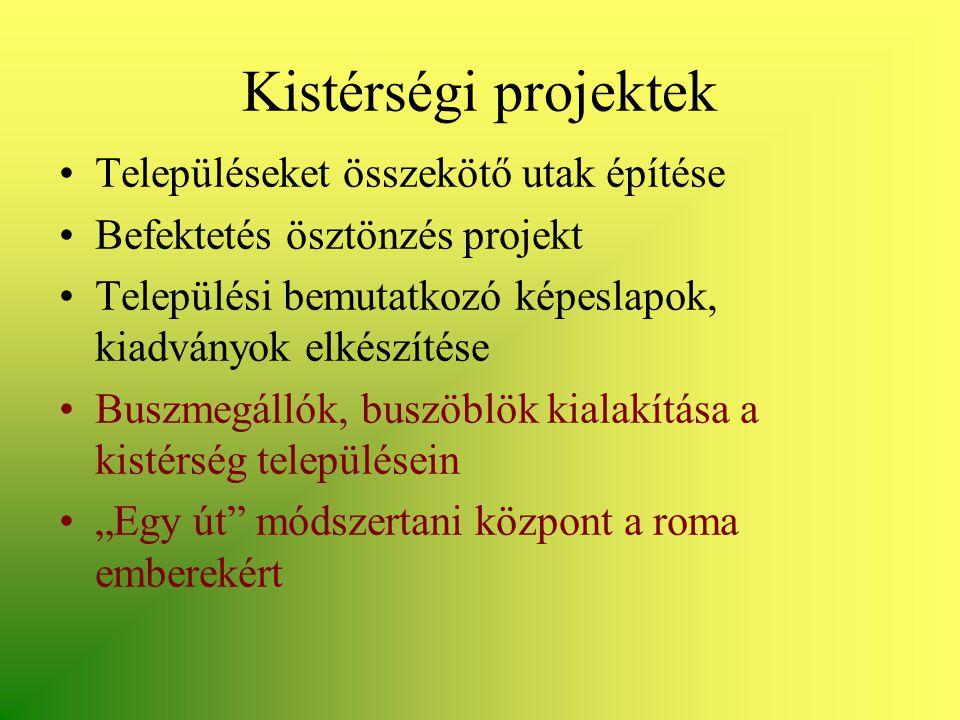 Kistérségi projektek •Településeket összekötő utak építése •Befektetés ösztönzés projekt •Települési bemutatkozó képeslapok, kiadványok elkészítése •B