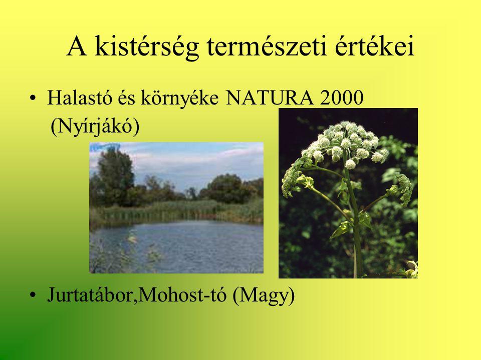 A kistérség természeti értékei •Halastó és környéke NATURA 2000 (Nyírjákó) •Jurtatábor,Mohost-tó (Magy)