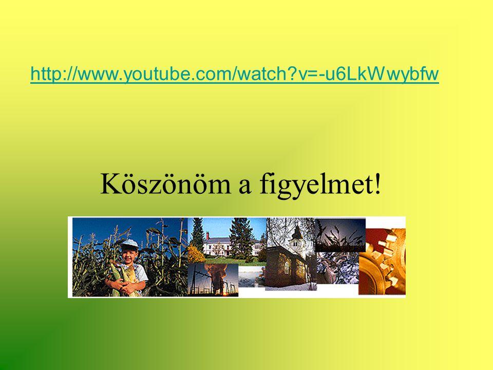 http://www.youtube.com/watch?v=-u6LkWwybfw Köszönöm a figyelmet!