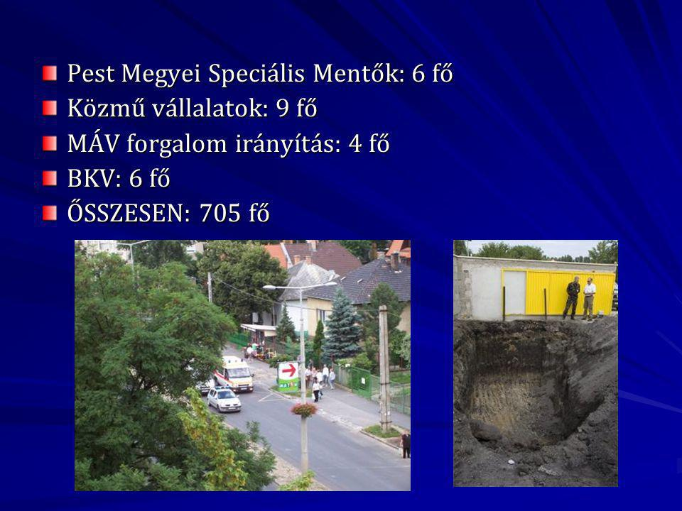 Pest Megyei Speciális Mentők: 6 fő Közmű vállalatok: 9 fő MÁV forgalom irányítás: 4 fő BKV: 6 fő ŐSSZESEN: 705 fő